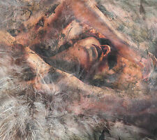 NEW! Converge - Unloved & Weeded Out [CD]
