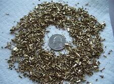 3LB Brass Orgone Shavings Turnings Shredded Chips Dust Science Art FREE SHIPPING
