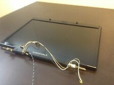 Alienware M17 R1 Screen Assembly