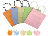 Pastel Mix Paper Gift Bags BB Twisted Handles / Party Loot Favour Bag & Tissue