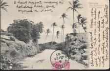 Crane Beach, Barbados - road - undivided back postcard, stamp. 1905 pmk