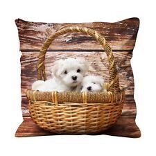 Maltais terriers dans un panier 45cm x 45cm canapé coussin-terrier cut pet dog