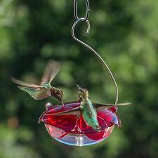 Bird Feeder, Droll Yankees Hanging Ruby Sipper Hummingbird Feeder w/ Clear Base
