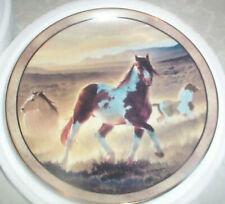 Wild And Free Desert King Nancy Glazier Danbury Mint Horse Plate