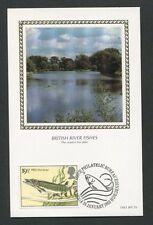 GB UK MK 1983 FISCHE HECHT ANGELN FISHING FISH CARTE MAXIMUM CARD MC CM d8268