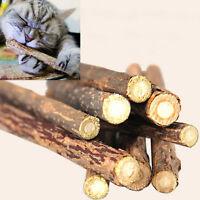 5 stk Pet Cat Stick Zahngesundheit Kitten natürliche Katzenminze Stick Chew Toys