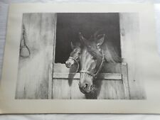 "1960 C. W. ANDERSON Horse Lithograph Print Harper ""Good Morning"""
