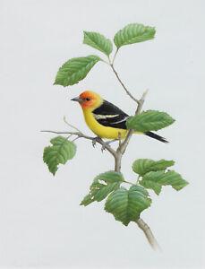 Mark Nyhof Original Painting Western Tanager Bird in Tree Wildlife Art Canadian