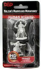 D&D 90011 Human Wizard [Male] (Nolzur's Marvelous Miniatures) Sorcerer Mage Hero