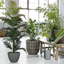Planta artificial plantas decoracion jardin hogar con maceta arbol tronco hojas