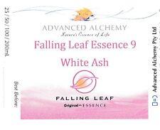 Falling Leaf Essence #9 Releases Trauma - Advanced Alchemy 25ml White Ash