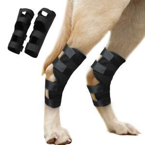 Dog Rear Leg Brace Support Hock Protector Back Hock Joint Hind Leg Compression