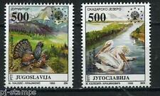 Europa Sympathy 1992 Joegoslavië 2569-2570 Europese natuurbescherming vogels