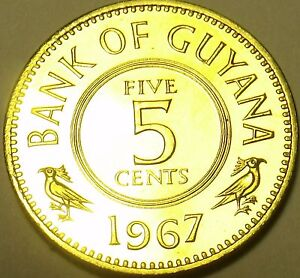 Rare Proof Guyana 1967 5 Cents~5,100 Minted~1st Year Ever Produced~Free Ship