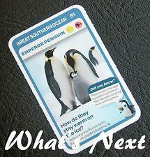 Woolworths  AUSSIE ANIMALS  Card 81/108 GREAT SOUTHERN OCEAN Emperor Penguin