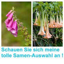 wunderschöner Fingerhut und rosa Engelstrompete: zwei tolle Blumen im Spar-Set !