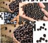 Whole Organic Malabar Black Pepper Fresh Grade A+ Fast Free Shipping 100 g