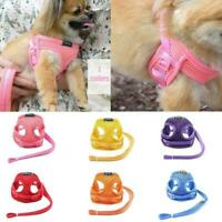 Small Dog Cat Harness and Walking Leads Set Pet Puppy Vest*HOT Mesh L6R4