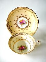 VINTAGE FOLEY BONE CHINA CUP AND SAUCER PALE APRICOT MULTICOLORED FLORALS GOLD