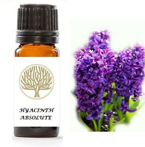 100% Pure Hyacinth Absolute Oil