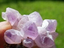 An Amazing 31.1 Gram Amethyst Crystal: A Cluster Of Terminated Crystals