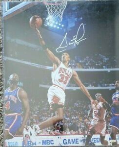 Scottie Pippen Signed Chicago Bulls 16x20 Photo TriStar Authenticated