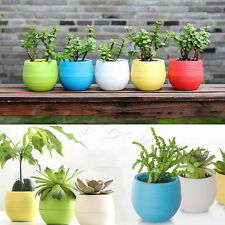 Colourful Mini Round Plastic Plant Flower Pot Garden Home Decor Planter Bid