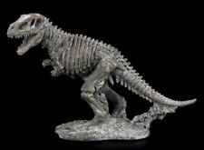 Dinosaurio Figura Grande Tiranosaurio Rex Esqueleto Fossil Arqueología