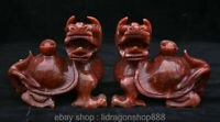 6,8 'Ancien Vieux Chinois Jade Rouge Sculptant Tortue Tortue Dragon Yuanbao