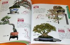 BONSAI beginner's book from japan japanese #0452