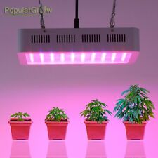 PopularGrow 300W Led Grow Light Full Spectrum Hydroponic Veg Flower grow 145Watt