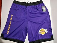 NBA Men's Lebron James Los Angeles Lakers Basketball Shorts Black/Purple Variety