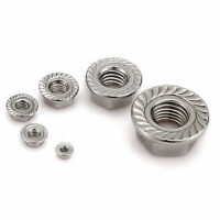 M3 M4,M5,M6,M8,M10,M12 M14 ,M16 A2 Stainless Steel Metric Flange Nuts