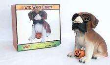 NEW in Box!!  Halloween Glasses/Nose/Mustache Costume Dog Indoor/Outdoor Decor