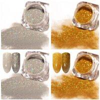 2Boxes Nail Glitter Powder Holographic Holo Nail Art  Laser Pigment