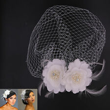 Bridal White Birdcage Face Veil Flower Feather Hair Comb Hairpin Wedding Party