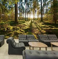 3D Forest sunshine R216 Business Wallpaper Wall Mural Self-adhesive Commerce An