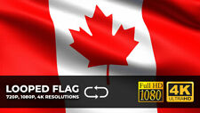 Canada Flag video, Seamless looping, 720p, 1080p, 4K resolutions