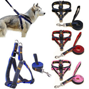 Step-in Dog Puppy Harness&Walking Leash Set No Pull Denim Dogs Vest Leads Collar