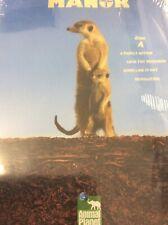Meerkat Manor Dvd Disc A