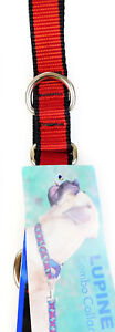 """Lupine 3/4"""" Dog Puppy Combo Collar  Adjustable 19-27""""  """"TLS RED"""""""