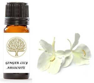 100% Pure Ginger Lily Absolute Oil