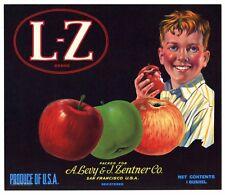 L Z Brand Levy Zentner CO., San Francisco *AN ORIGINAL APPLE CRATE LABEL*