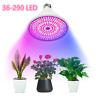 290/200/106 LED Grow Light E27 Light Lamp Bulb for Plant Greenhouse Hydroponic W