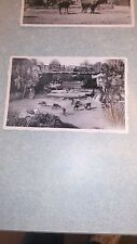 Ancienne carte postale, zoo d'Anvers n°7