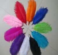 20cm - 25cm  Long Fluffy OSTRICH FEATHERS - Packs of 10 Wedding Decor Reduced