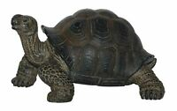 Tortoise Baby - Lifelike Ornament Gift - Indoor or Outdoor - Pet Pals NEW