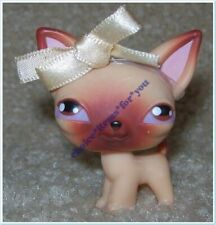 LITTLEST PET SHOP #1 DOG PUPPY CHIHUAHUA : TAN : PURPLE DOT EYES : **RARE**