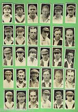 #D151.  THIRTY 1928  AUSTRALIAN & ENGLISH CRICKET  CIGARETTE CARDS