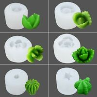Succulent Cacti Plant Candle Mold Moulds Soap DIY Craft Silicone  Plsei